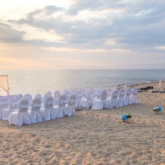 wedding (342)