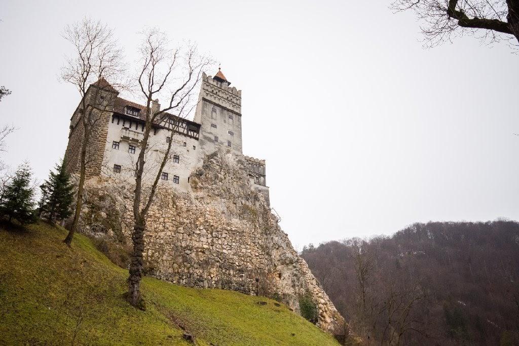 Nunta la castel 3